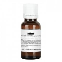 Essenza MENTA per liquido del fumo macchina aroma fragranza fog machine smoke fluid fragrance profumo
